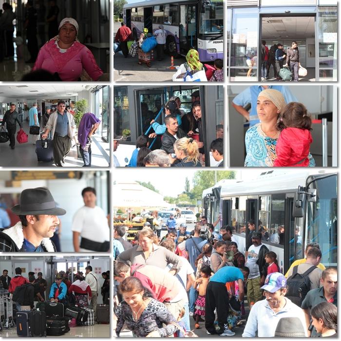 Opinia Timisoarei: tigani Lyon aeroport Timisoara colaj