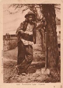tigani rezemat de copac sufletul soldatului